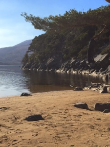 Perfect Camping Pods for 4 people - Huts for Rent in Killarney
