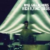 Noelgallagherhighflyingbirds